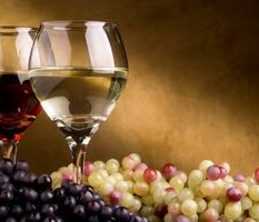 Annual Spring Wine Tasting Fundraiser – April 25, 2015