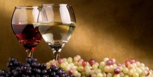 New Millennium Project Annual Spring Wine Tasting Fundraiser